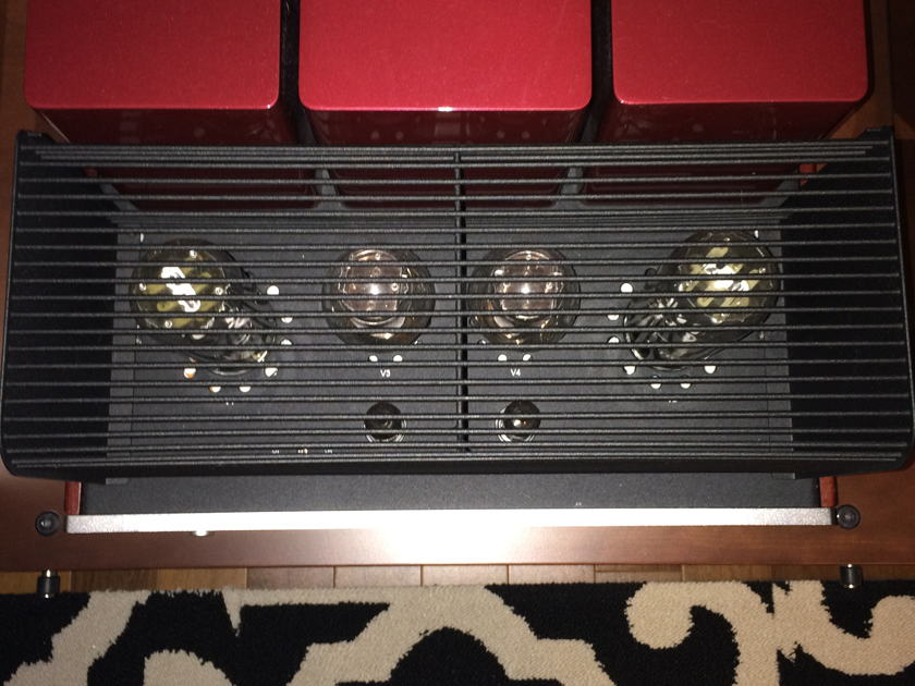 Triode Corporation TRV-P845SE SET Amplifier
