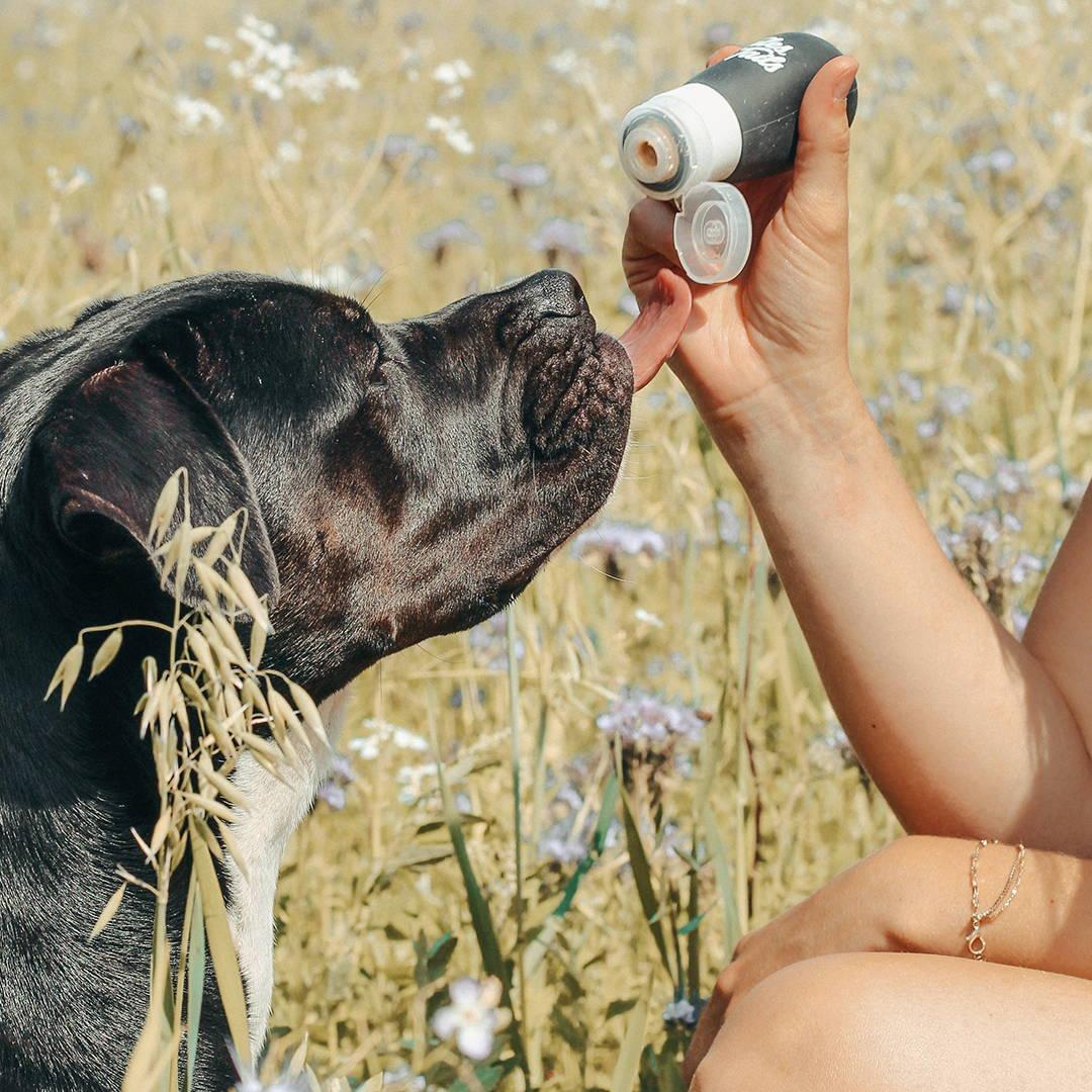 Futtertube für Hunde zum Trainieren