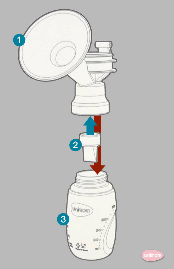 Indoors - Assembly and Use of Minuet Double Electric Breast Pump