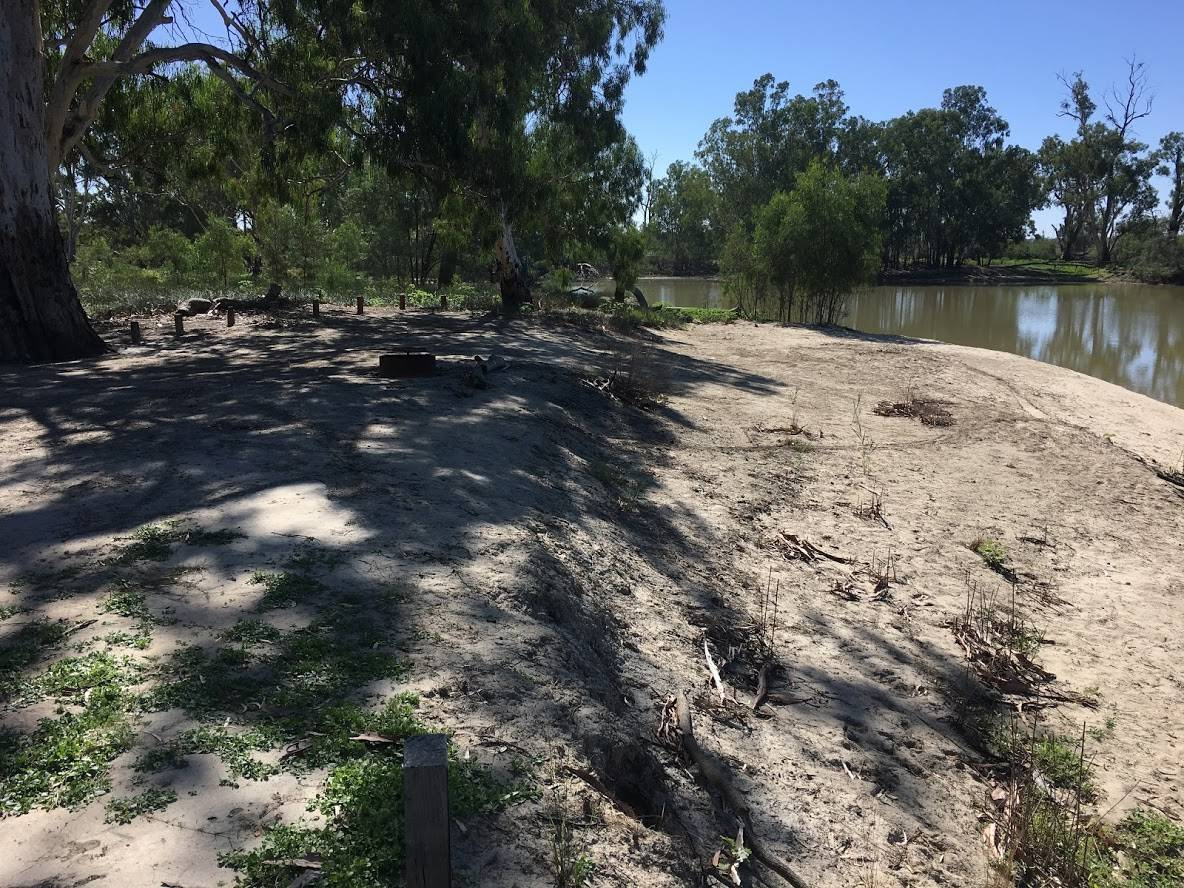 Find the best campsites on the Murray river on the Katarapko Creek