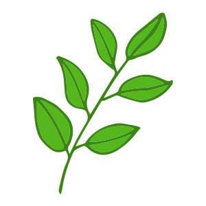 Matières naturelles et durables, marque éco-responsable