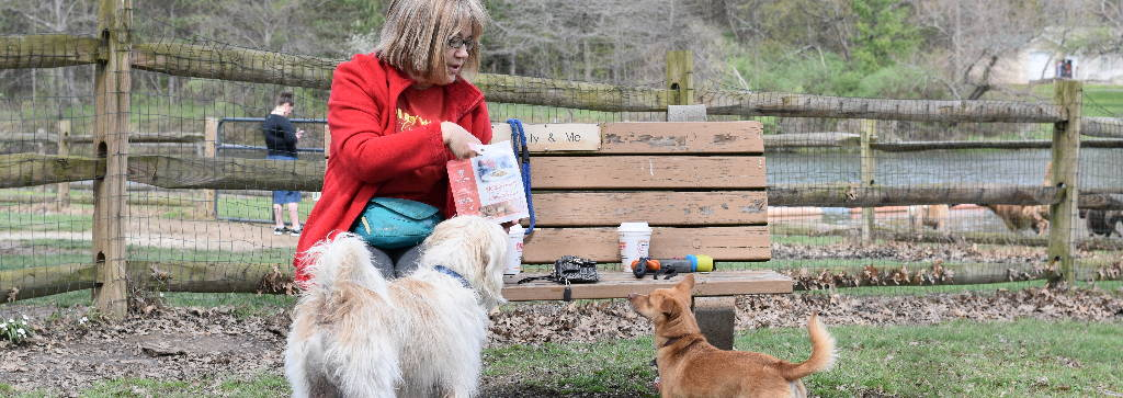 Feeding a healthy dog treat in the park with pet Chef Appetizer Bites dog treats.