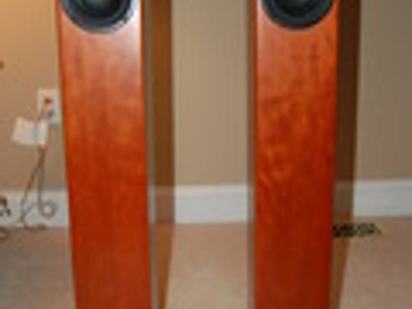 Totem Acoustic Arro  - Cherry and Perfect