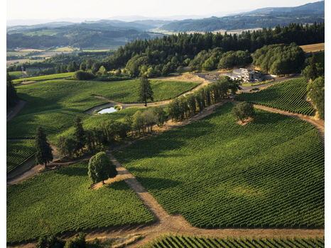 Skyview of Oregon Wine Country with Alexana Winery
