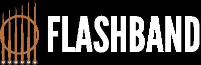 Flashband Logo