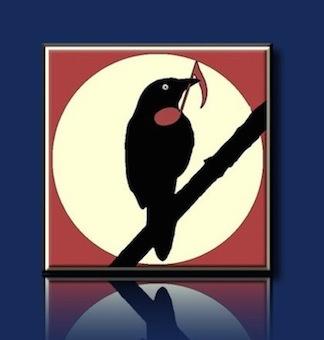 blackbird_audio's avatar