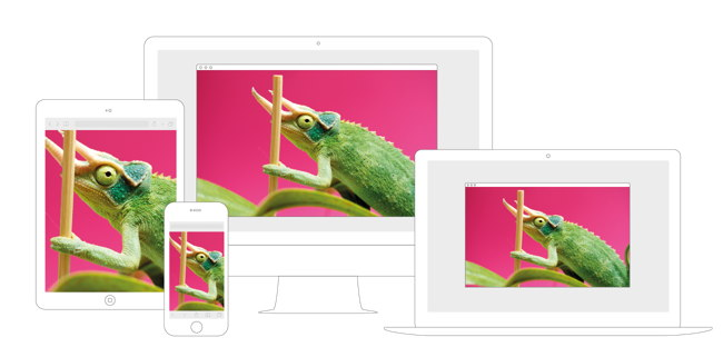 Responsive image on mobile devices, laptop, and desktop