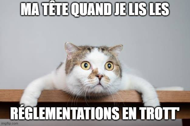meme-reglementation-trottinette-electrique
