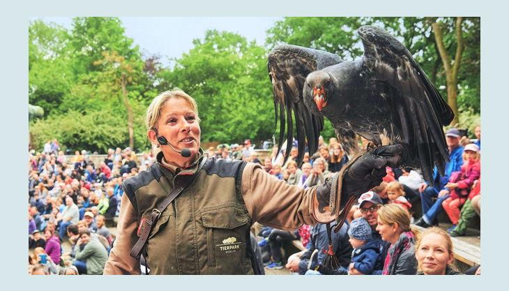 tierpark berlin friedrichsfelde flugshow