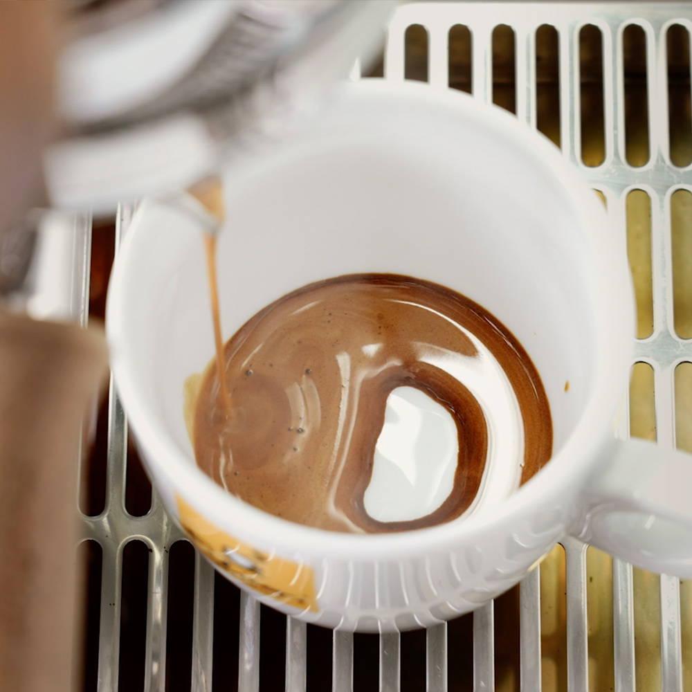 filicori zecchini caffe coffee biologico fairtrade espresso drip filtro v60 chemex capsule cialde arabica robusta modbar bologna centenario formazione corsi sca baristi laboratorio te cioccolato 1919 2019