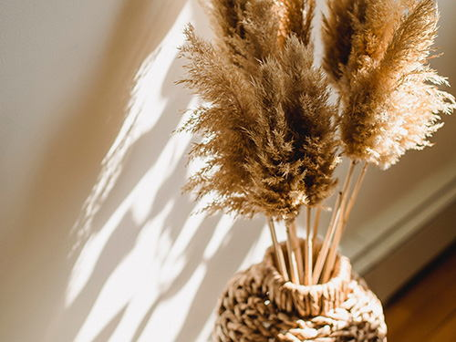 Dried flowers as a home staging alternative - fascinating and versatile
