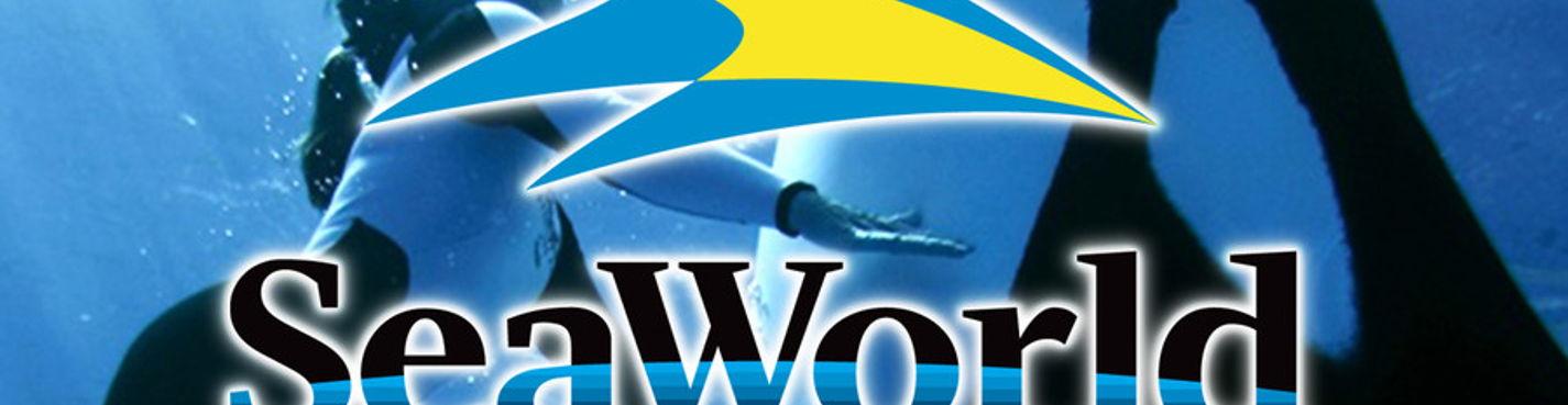 Экскурсии в Орландо. Аквапарк SeaWorld (морской мир)