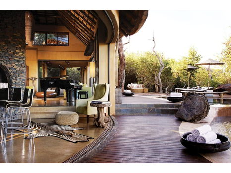 African Safari and Wine Experience