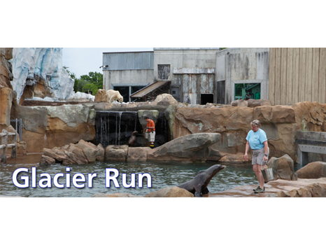 Behind the Scenes Tour of Glacier Run & Breakfast with the Bears