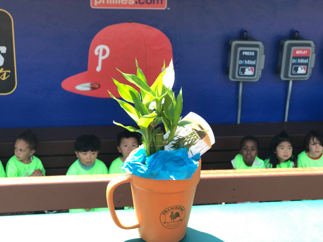 The Adventure Club visited the Phillies stadium for a behind the scenes at Citzen's Bank Park.