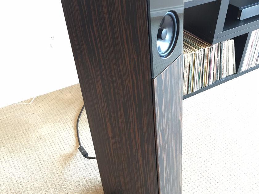 Audio Physic Avanti Amazing Speakers!