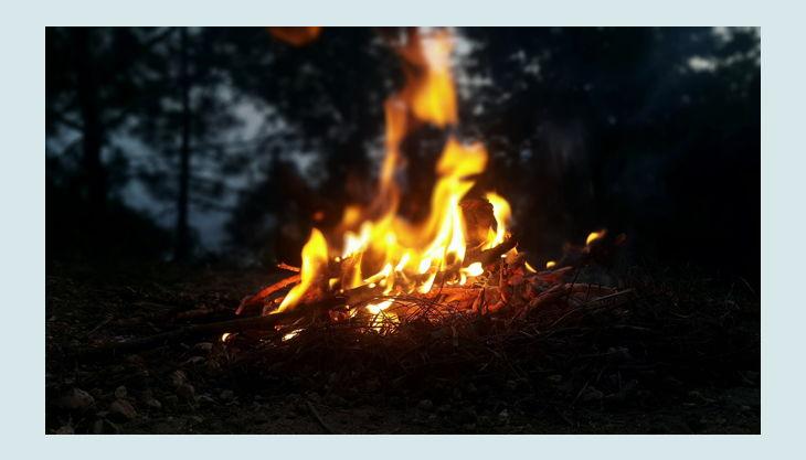 naturgut ophoven lagerfeuer wald pxb