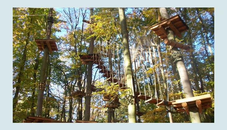 abenteuerpark potsdam kletterwald