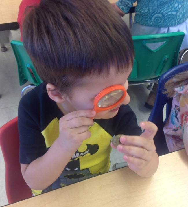 child with magnifying glass at Primrose School of Clear Lake; best daycare and child care center in Clear Lake, 77062