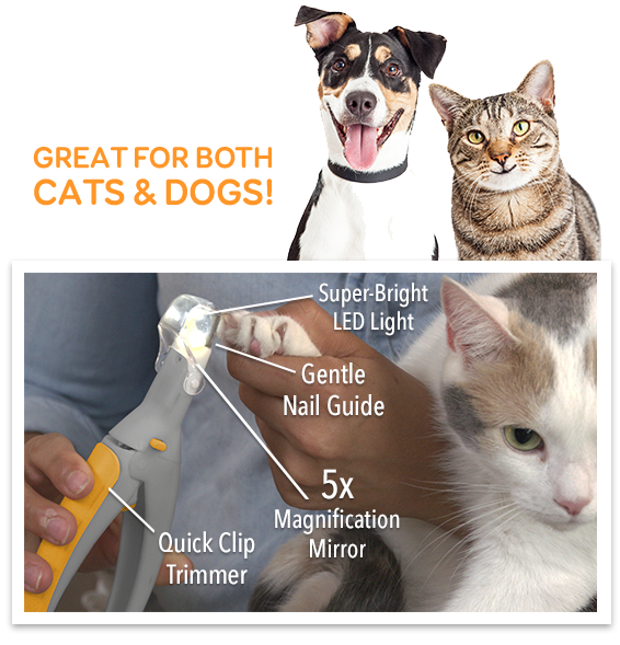 Great For Both Cats & Dogs