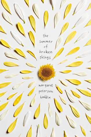 Four Anchors Clean List April 2018: The Summer of Broken Things by Margaret Peterson Haddix