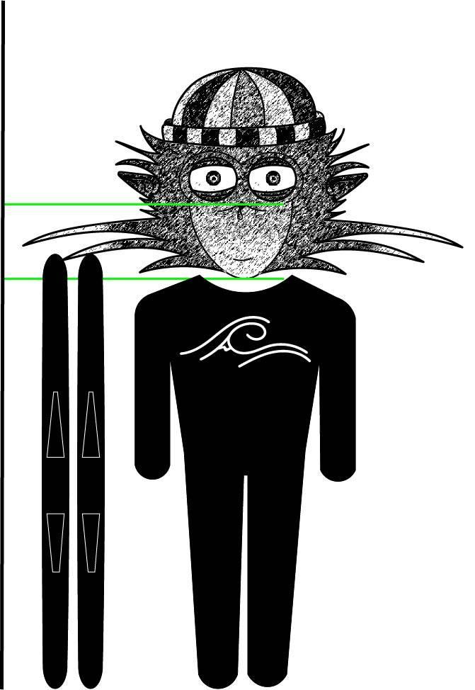 C'est un dessin avec un skieur débutant à côté de sa paire de ski, il y a également une mesure avec des bandes verte montrant la taille à prendre pour des skis débutant. Il y a également le logo de la marque Saïmiri-SB.