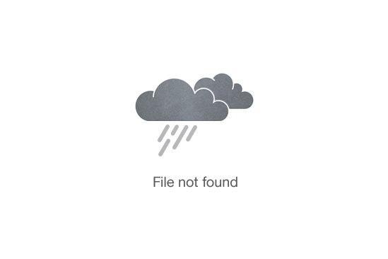 Thai Floral Arts & Culture