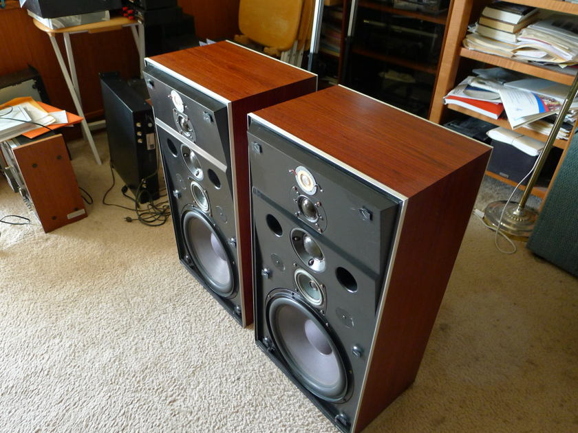 BANG & OLUFSEN M 100/2 5 WAY W/ 12 IN. BASS