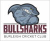 Burleigh Cricket Club Logo