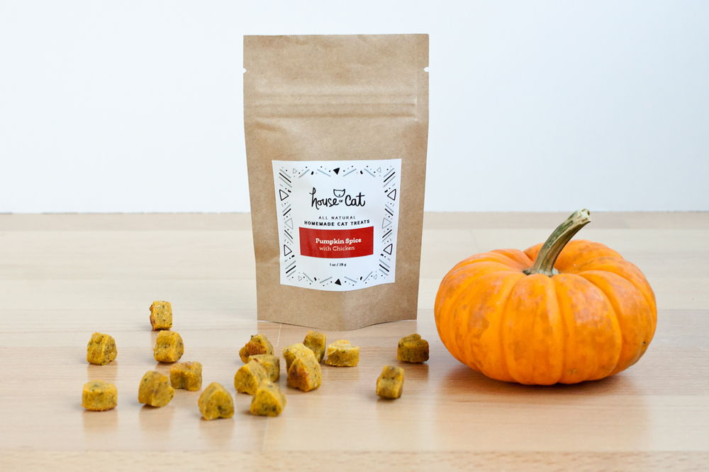 Treats-Pumpkin-1oz.jpg
