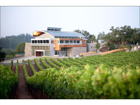 Unforgettable Williams Selyem Experience for 2 in the Heart of Sonoma County