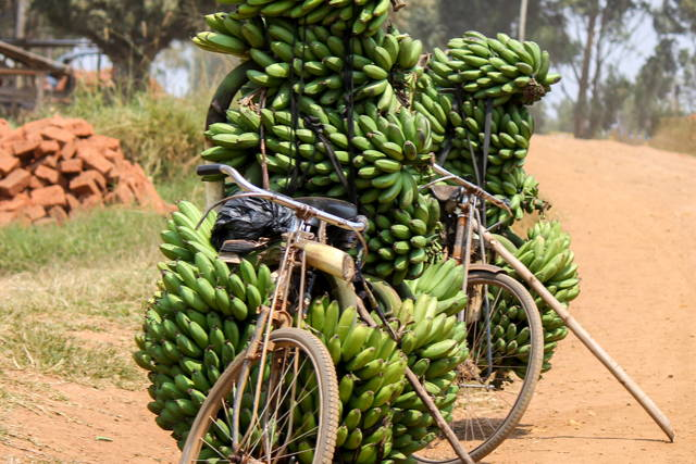 Historic City Tour of Kampala
