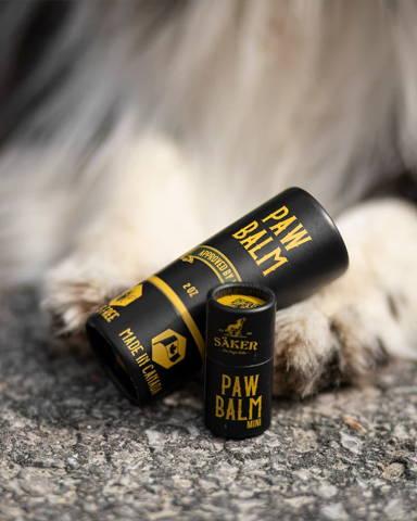 paw balm mini next to dog paws