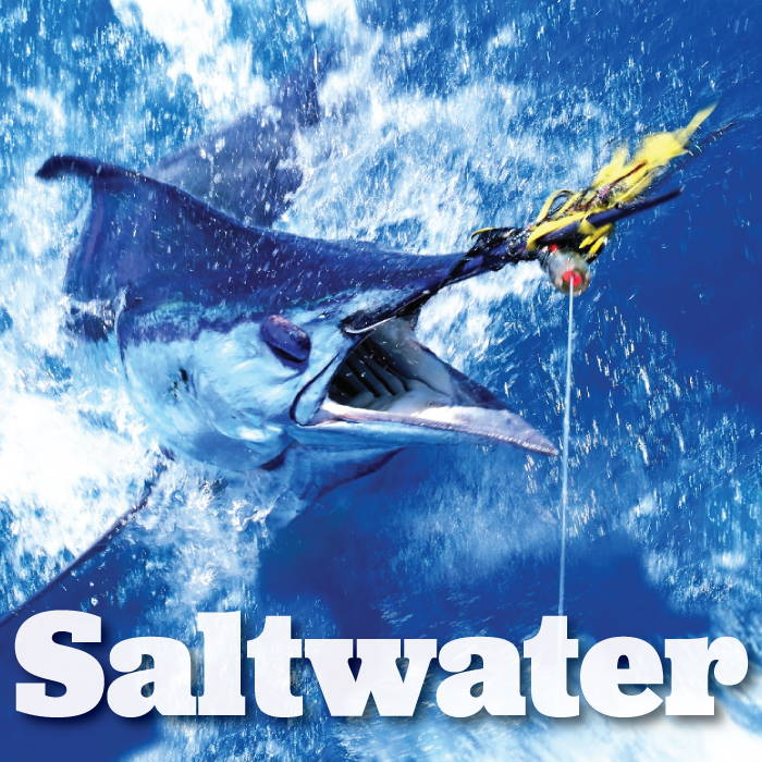 saltwater fishing equipment supplies accessories by Great American Sporting Goods