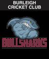 burleigh bulls cricket club emu sportswear ev2 club zone image custom team wear