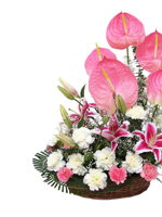 HF Mixed Exotic Flowers Basket
