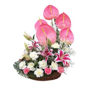 HF Mixed Exotic Flowers Basket