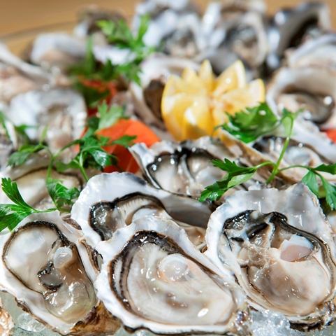Oysters_smaller.jpg