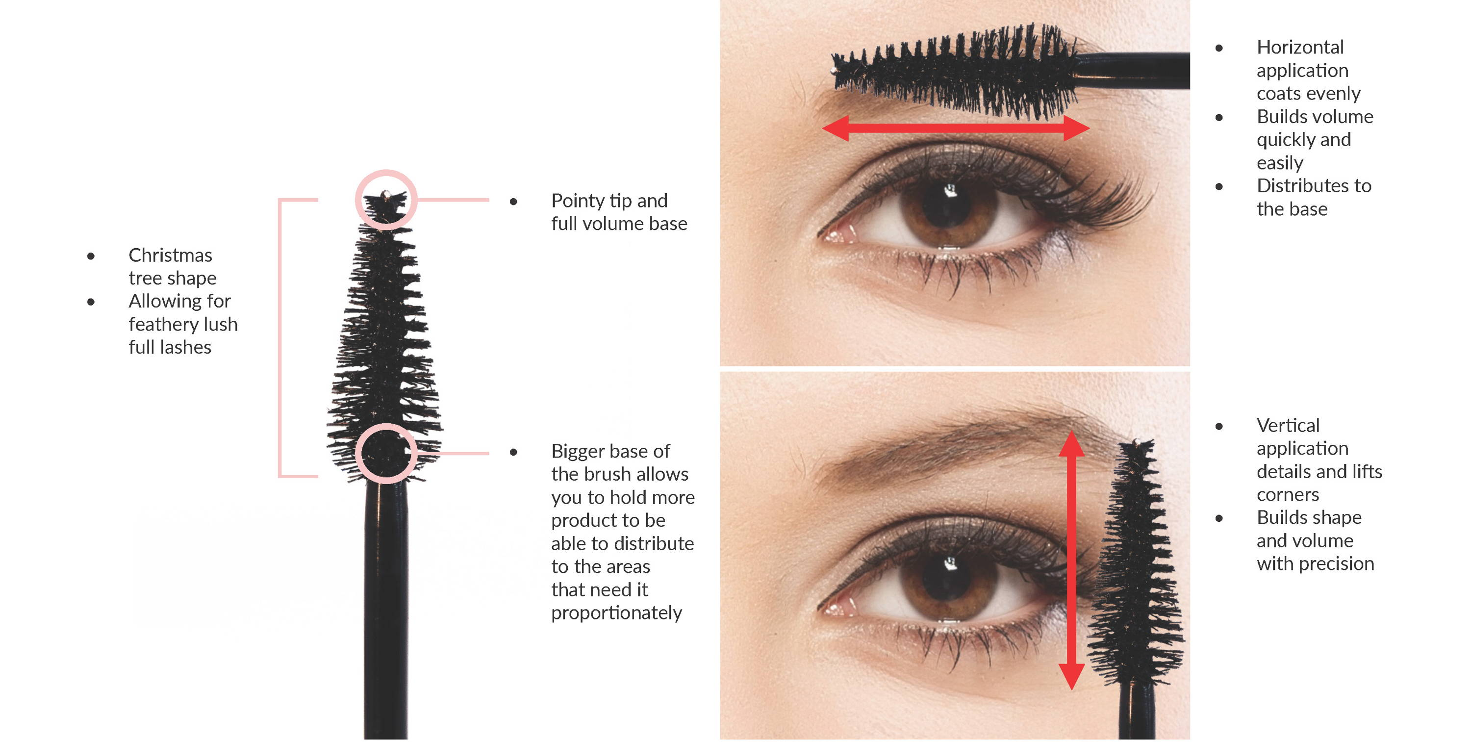 Christmas tree shape brush allows for feathery lush lashes Pointy tip and bigger base allows you to hold more product to be able to distribute to the areas that need it proportionately. Horizontal Application - Coats lashes evenly, builds volume quickly and easily. Helps distributes to the base. Vertical Application - Details and lifts corners. Builds shape and volume with precision.
