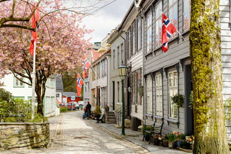 Walking Tour in Bergen Private@Incredible Low Price (3hrs)