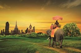 Tong Thai image