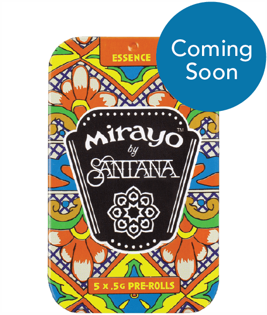 image of Mirayo CBD cannabis tin