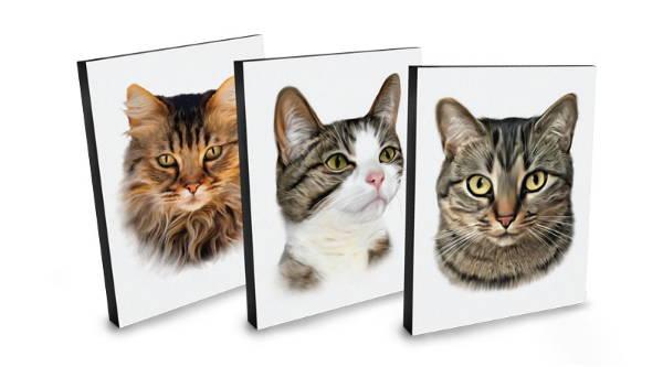 cat portrait - digital