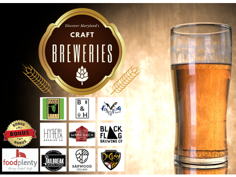 Discover Maryland's Craft Breweries
