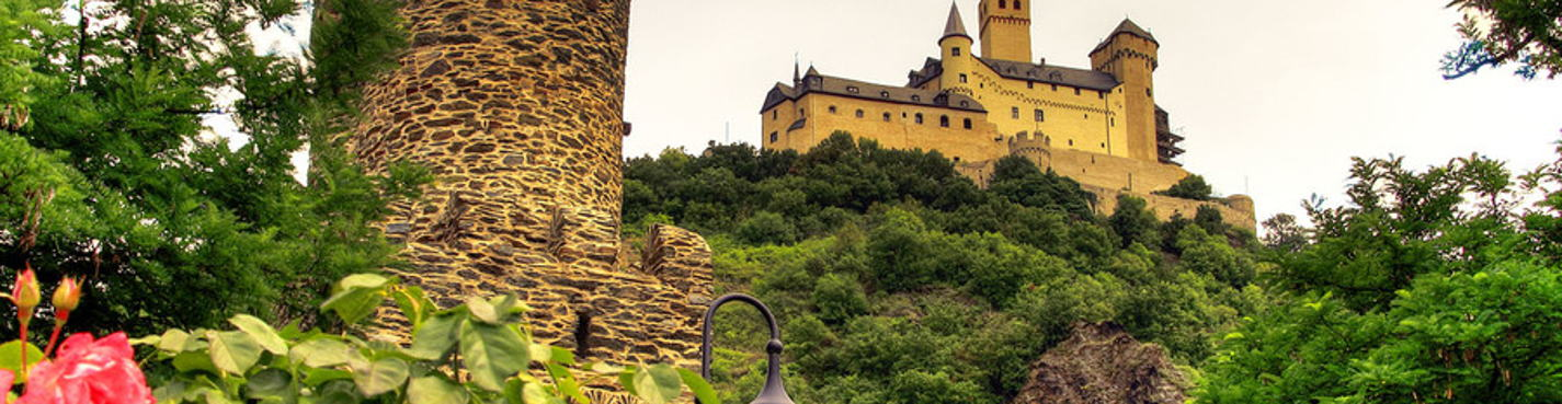 Замки на Рейне