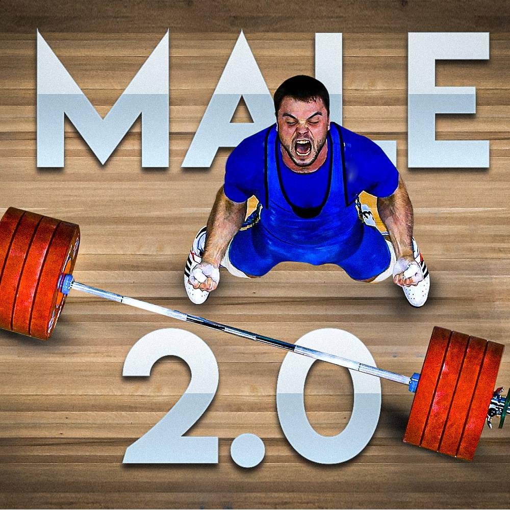 Female Training Program (12 weeks)