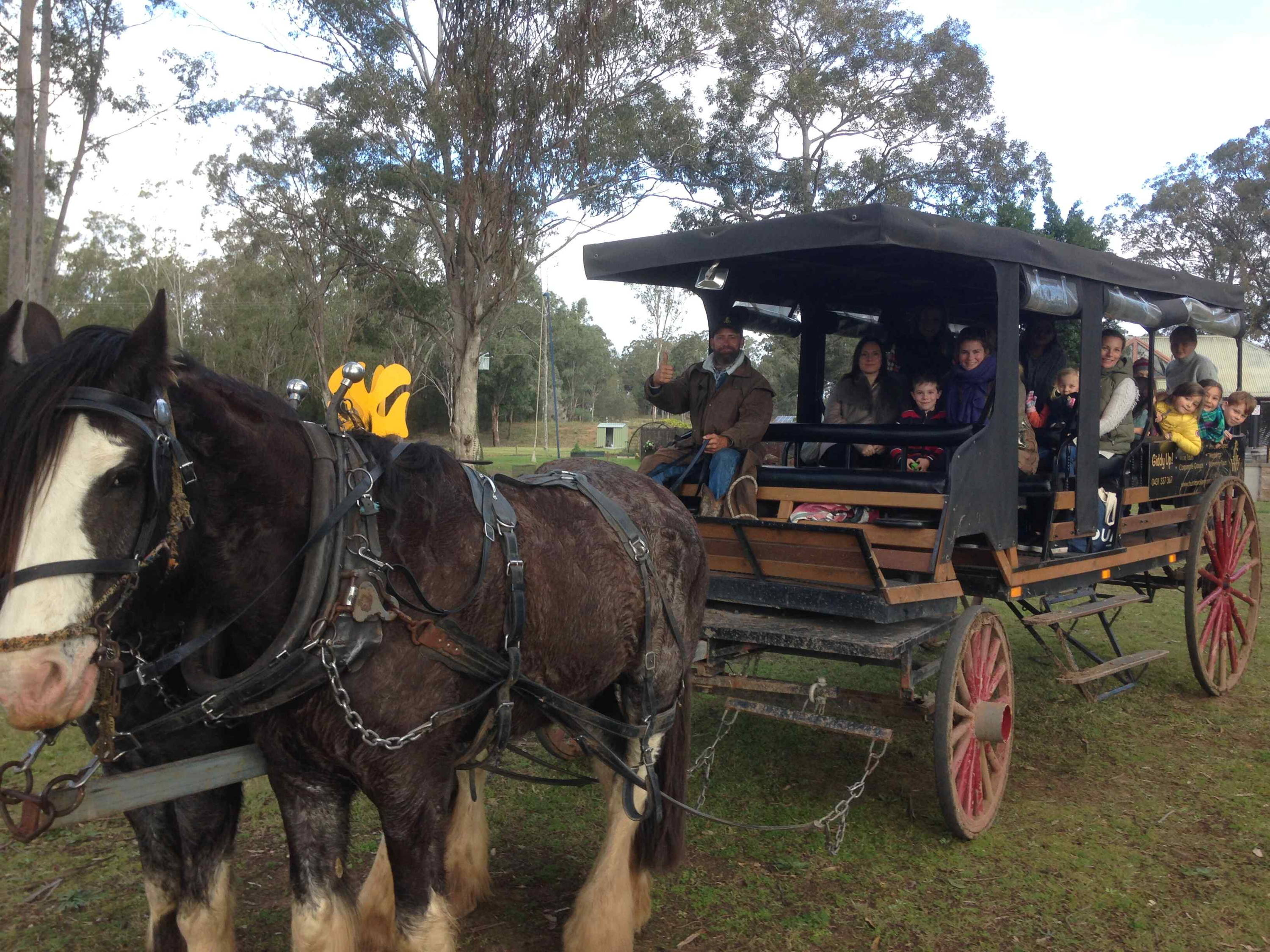 Vintage Carriage at Blaxland Inn Hunter Valley Winery