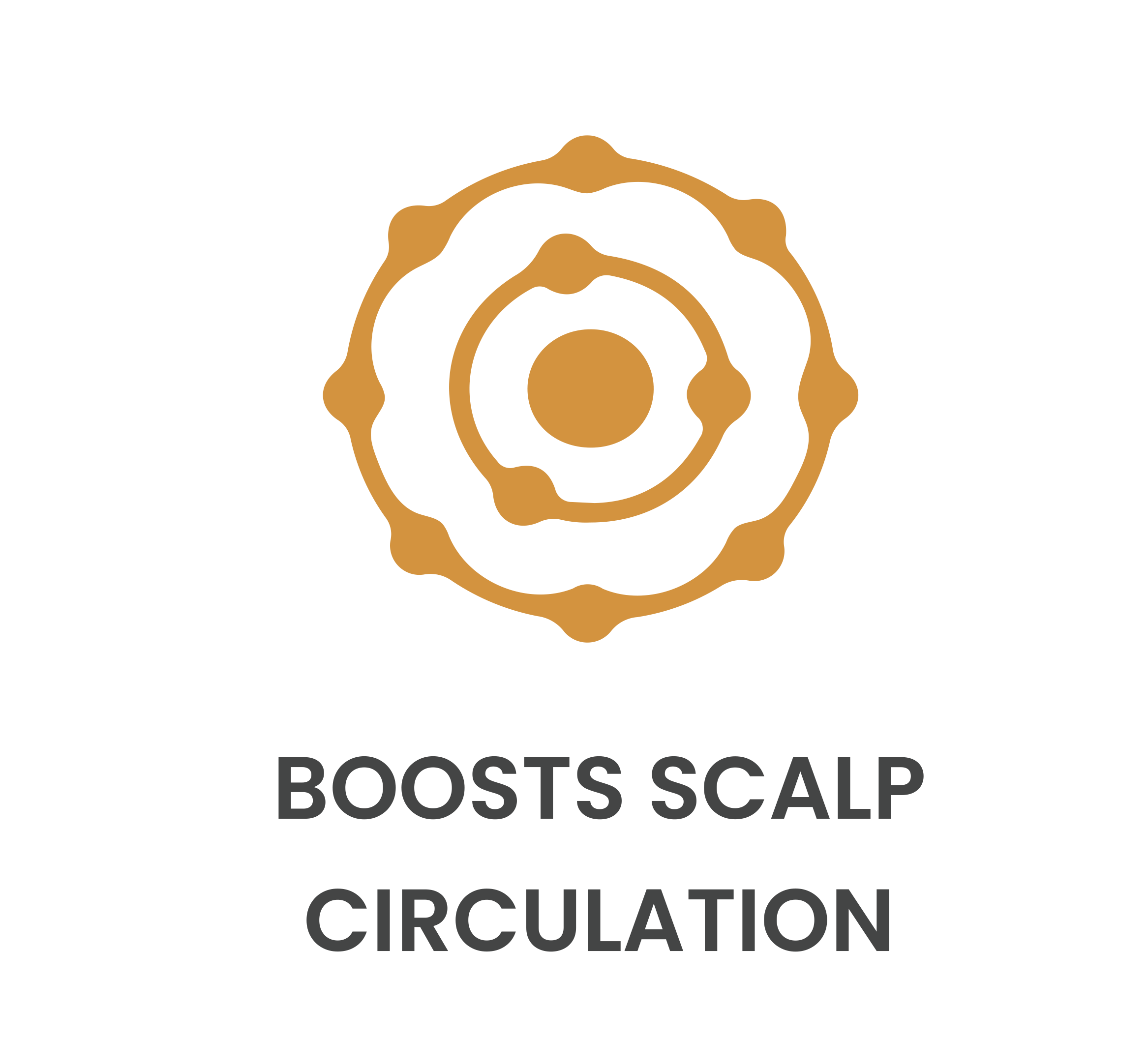 Boosts Scalp Circulation