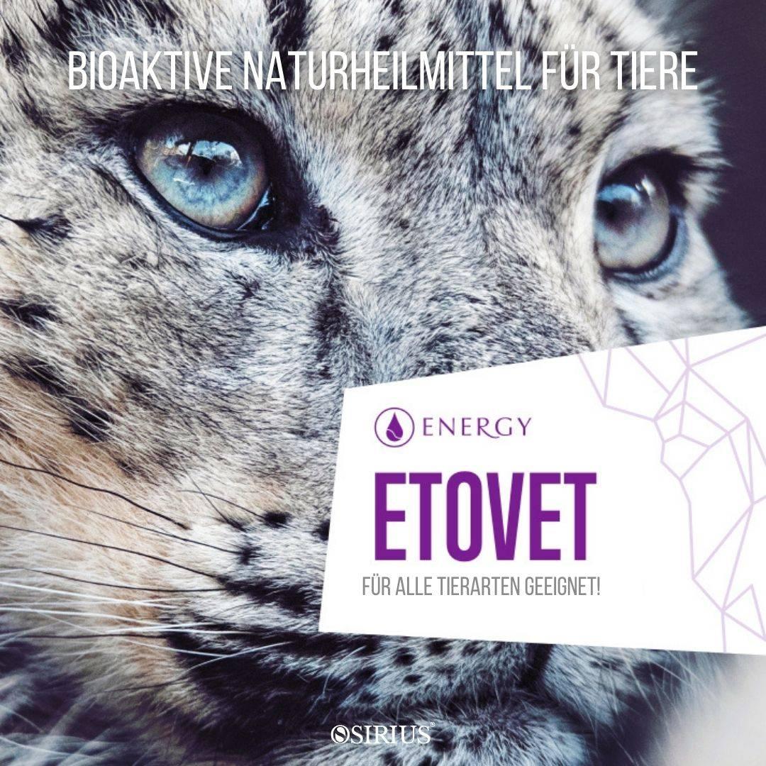 ETOVET Naturheilmittel für Tiere, Hunde, Katzen, Pferde und andere Tiere!