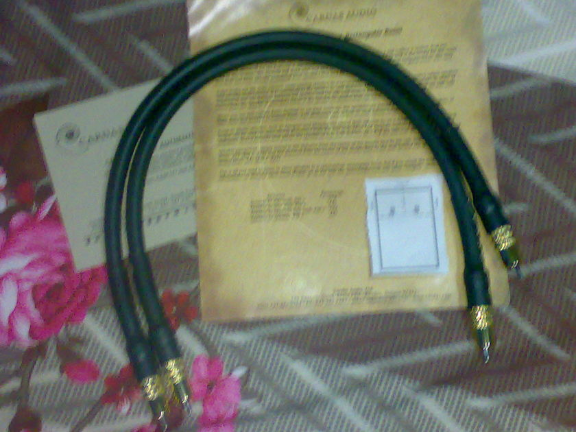 Cardas Golden reference 0.5m RCA pair used